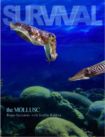 Sankaran R. - Survival - The Mollusc