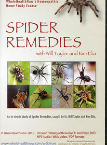 Elia K. / Taylor W. - Spider Remedies