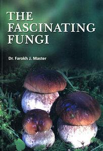 Master F.J. - The Fascinating Fungi