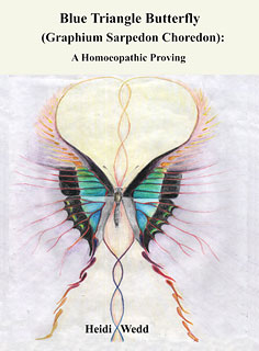 Wedd H. - Blue Triangle Butterfly - A Homoeopathic Proving
