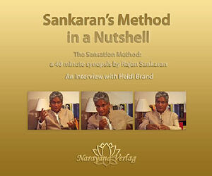 DVD - Sankaran R. - Sankaran's Method in a Nutshell - DVD - The Sensation Method: a 40 minute synopsis by Rajan Sankaran an interview with Heidi Brand