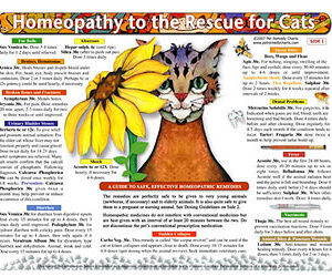 Whitney L. - Homeopathy to the Rescue for Cats chart/poster