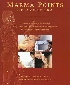Lad V. - Marma Points of Ayurveda - The Energy Pathways for Healing Body, Mind and Consciousness